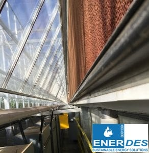 Greenhouse coolings pads Enerdes 4