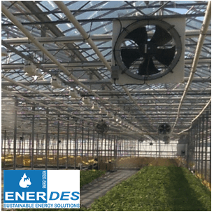 Greenhouse fans air circulation ventilation Enerdes